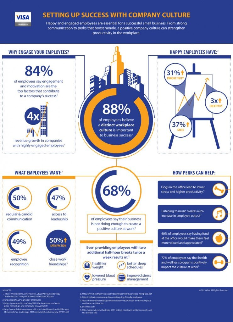 Visa Business Infographic