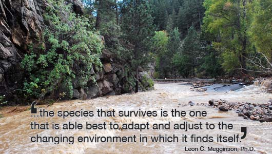 Business Lessons from the Boulder Flood Darwin Misquote