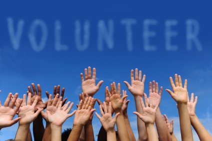 organizational culture and leadership volunteer