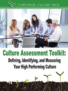 Cultural-Assessment-Toolkit-main-sidebar