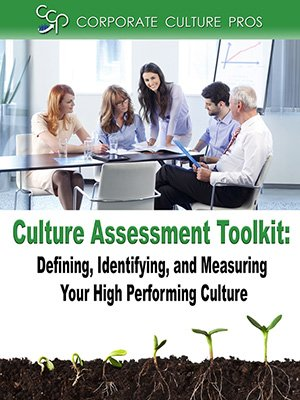 Culture Assessment Toolkit plus survey