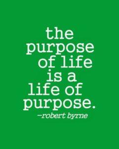 Culture Drives Profit - Purpose