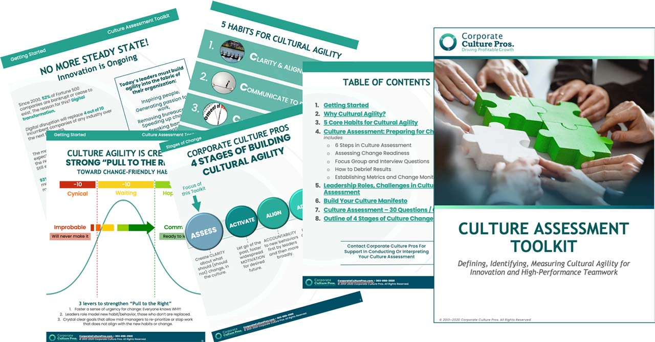 Corporate Culture Pros Assessment Toolkit